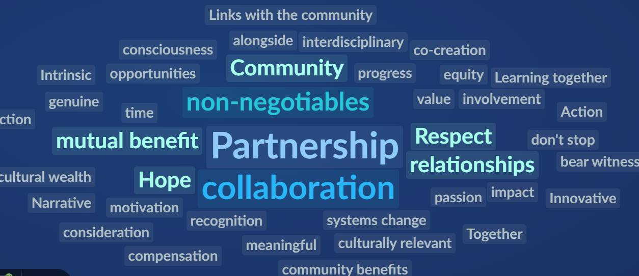 Participant-generated word cloud from panel on partnerships.