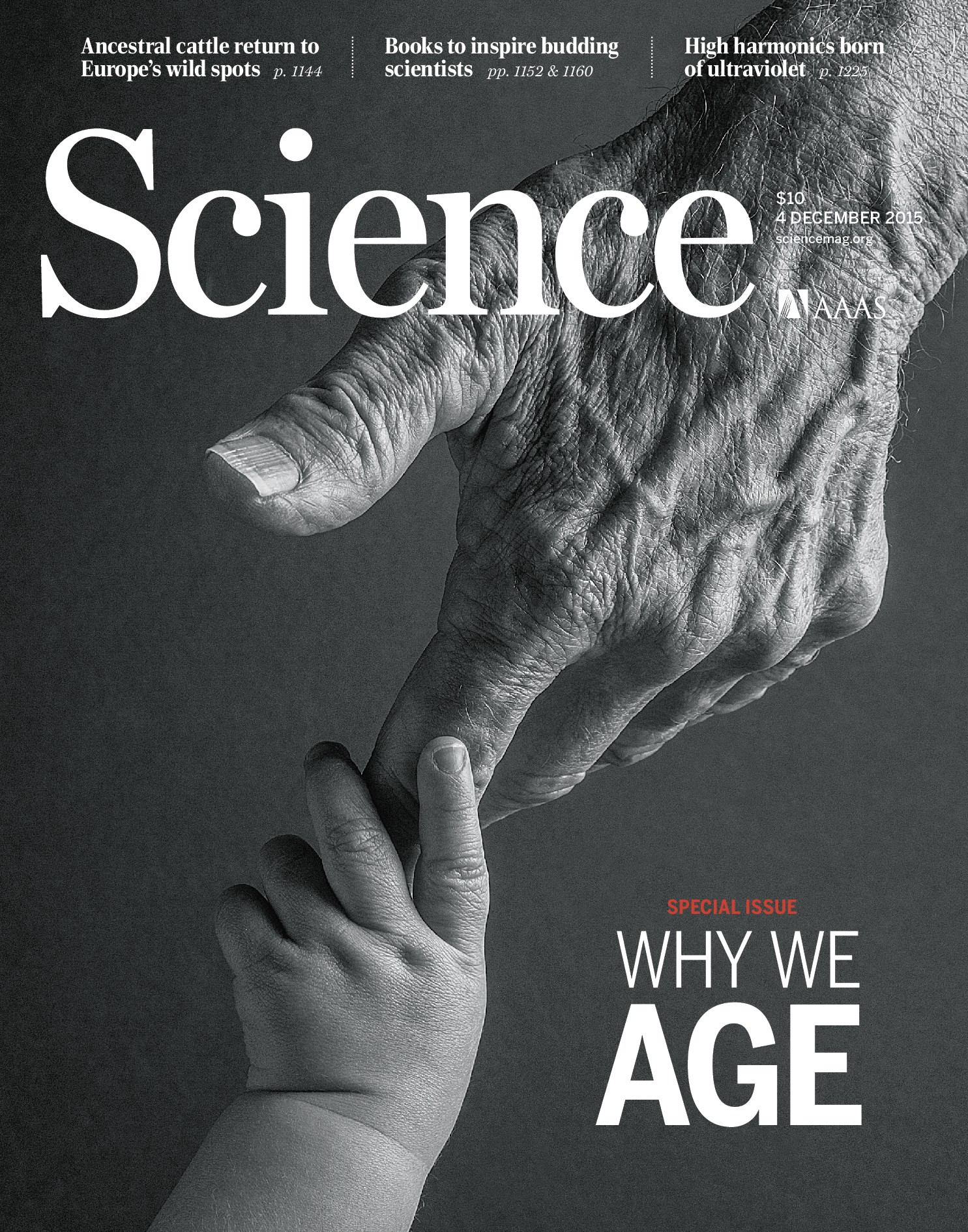 daily southt science magazine - HD943×1200