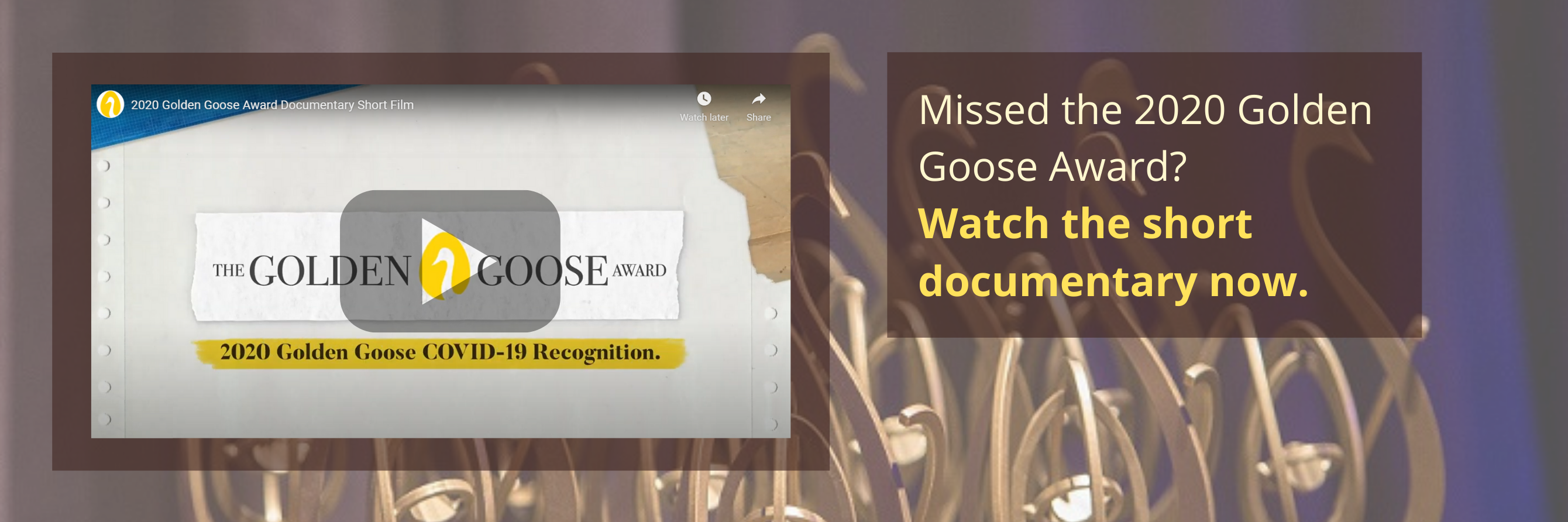 Youtube video of Golden Goose Awards, with text: Missed the 2020 Golden Goose Award? Watch the short documentary now.