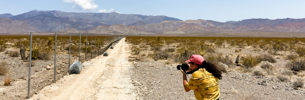 A woman in a yellow shirt stands on a road in the desert photographing something in the distance.