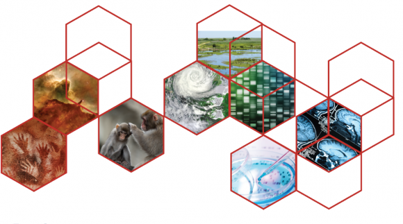 DoSER Engaging Scientists logo hexagons with pictures of scientific images