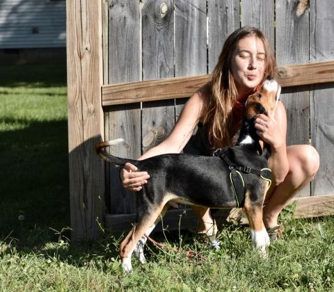 AAAS Mass Media Fellow Courtney Sexton Studies How Dogs Outsmarted Us