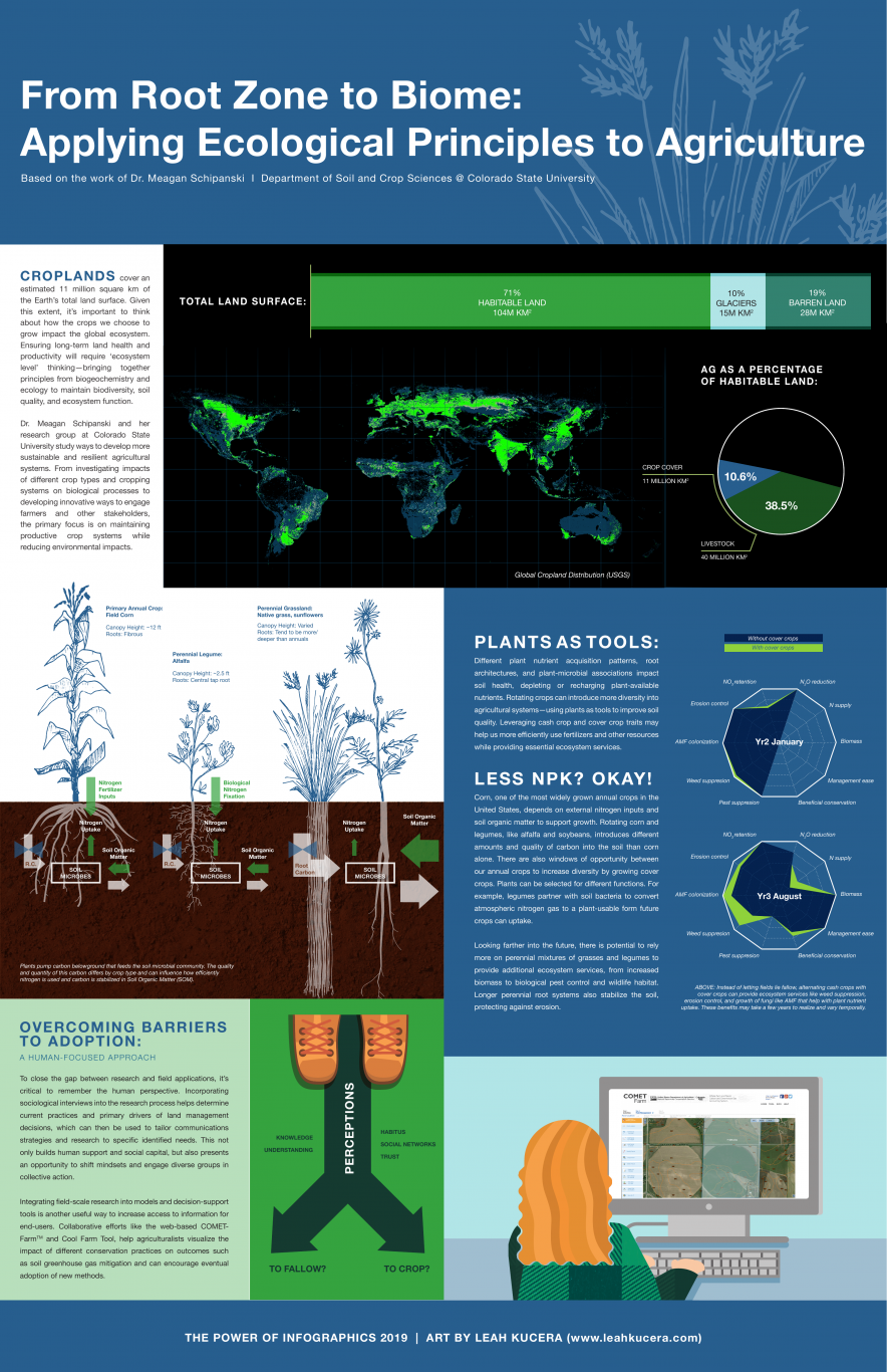 From Root Zone to Biome