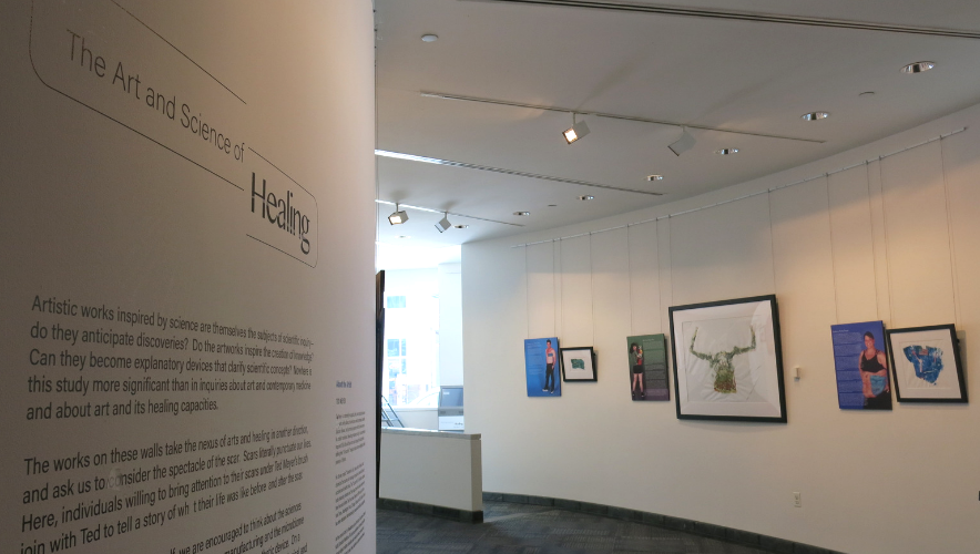 The Art and Science of Healing exhibit at the AAAS Art Gallery