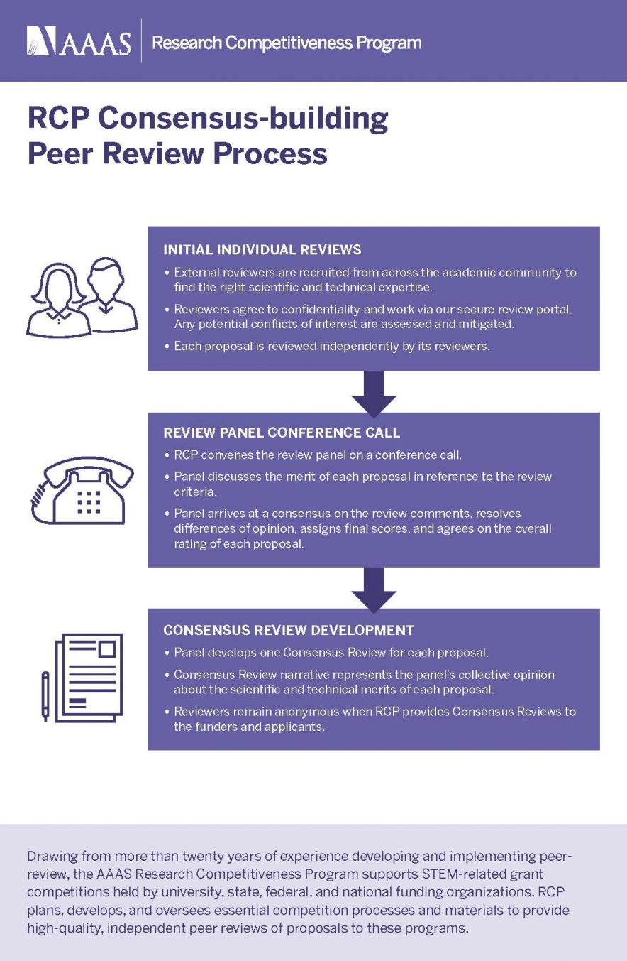 Graphic showing peer review process