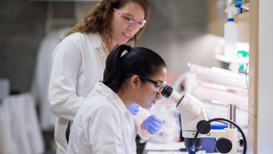 Two women in lab coats, one looking into a microscope