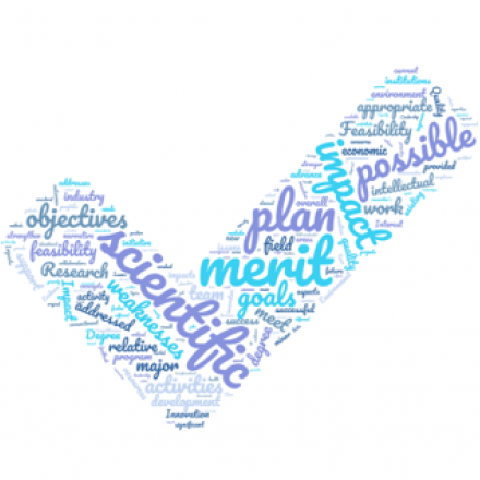 Wordcloud in the shape of a check