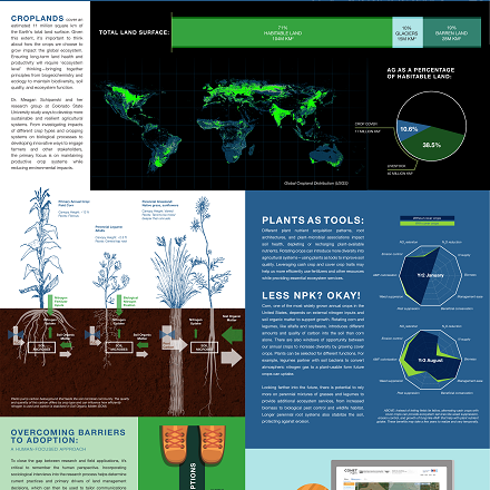 Infographic: From Root Zone to Biome