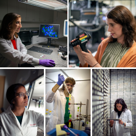 Five winners of the L'Oreal USA For Women in Science fellowship