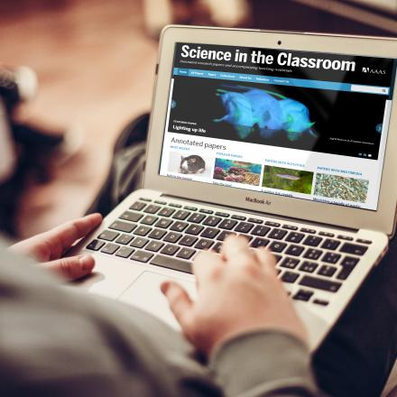 Image of student using Science in the Classroom website