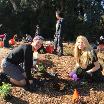 Young adult LDS members planting native seedlings at a local park in the Palo Alto area