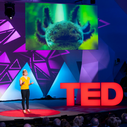 Victoria Gill delivering a TED Talk