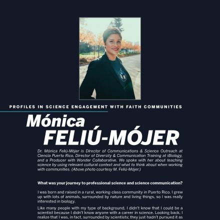 First page of the Feliu-Mojer profile