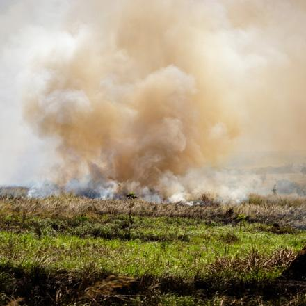 agricultural burning in Africa
